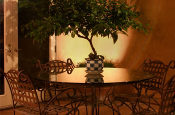 Project 7- Silhouette Plant on Courtyard Table
