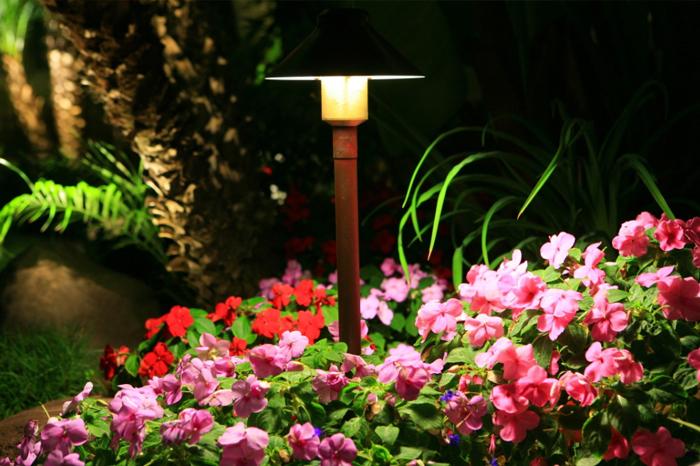Maintenance 3 – Light Shower Over Flowers