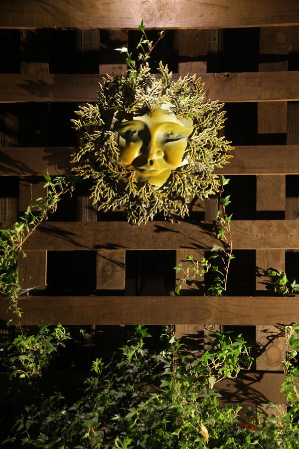 Project 19 – Sun On Lattice
